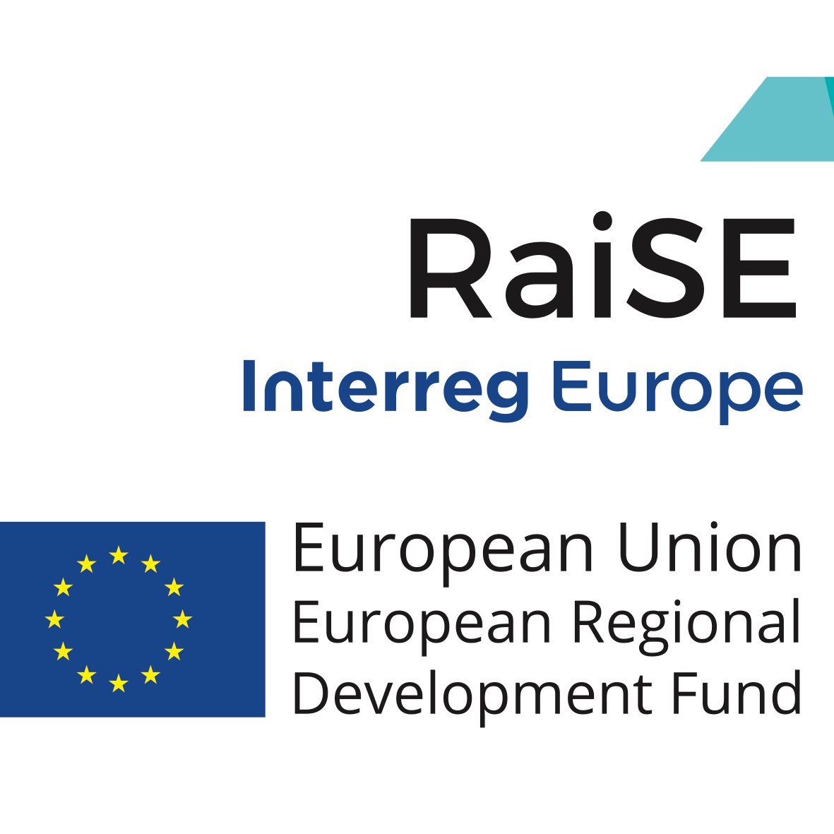 RaiSE – Enhancing social enterprise competitiveness through improved business support policies